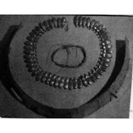 Object(s) photograph: Site: Giza; View: G 8887