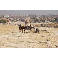 Khafre Pyramid Complex: Site: Giza; View: Khafre Causeway, Sphinx, Sphinx Temple, Khafre Valley Temple