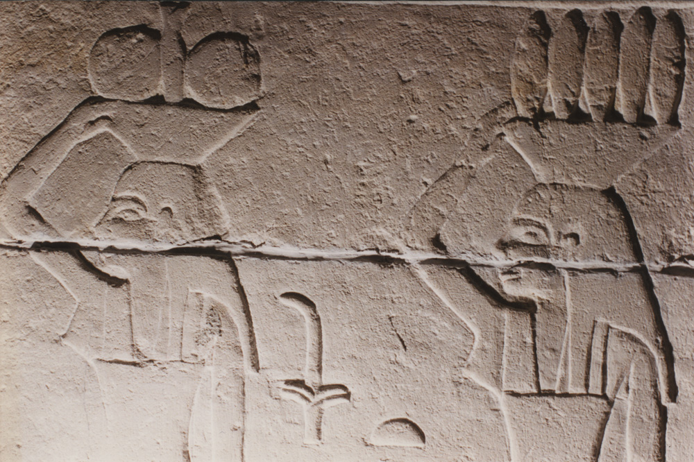 Object(s) photograph: Site: Giza; View: G 2155