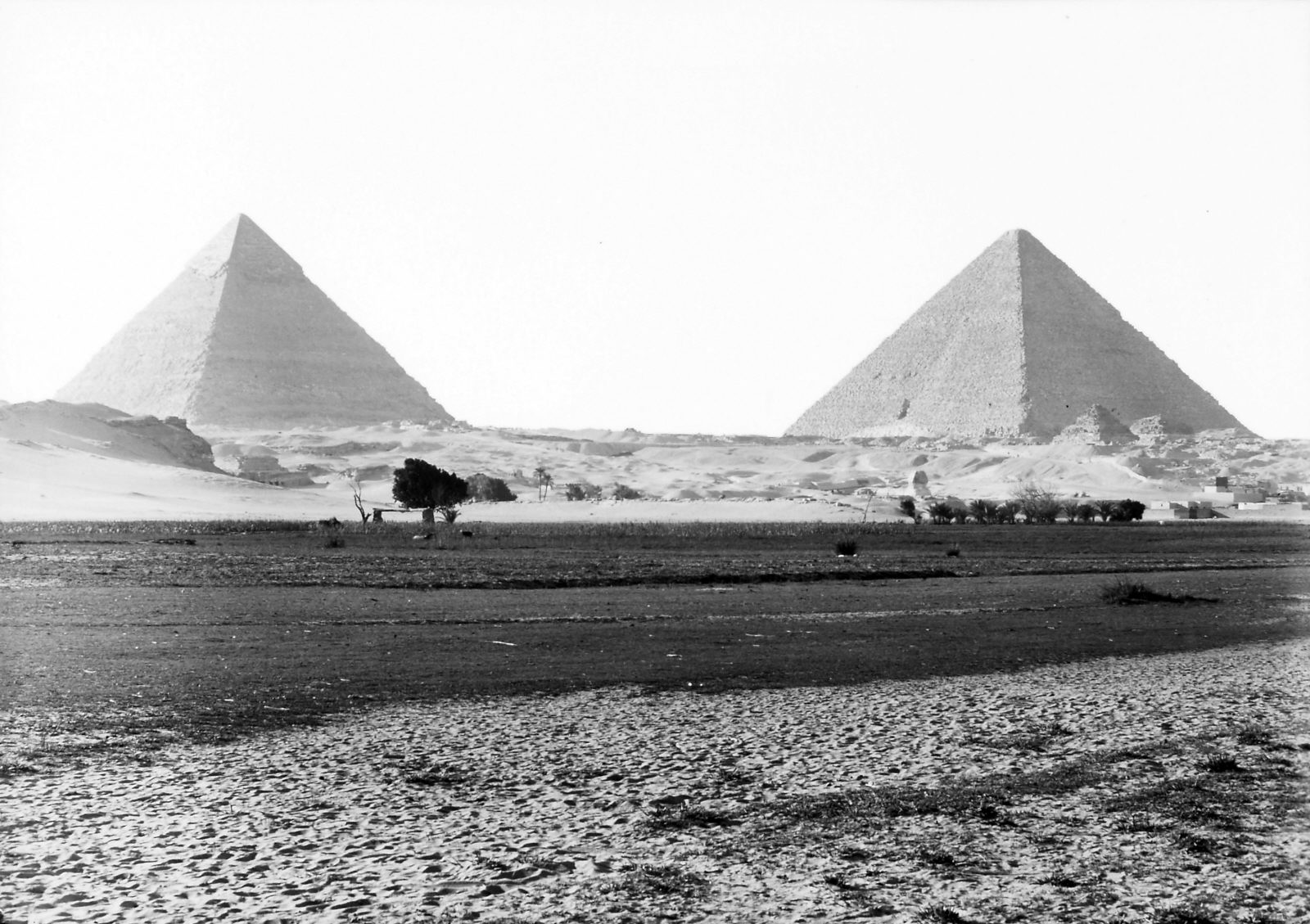 People & places: Site: Giza