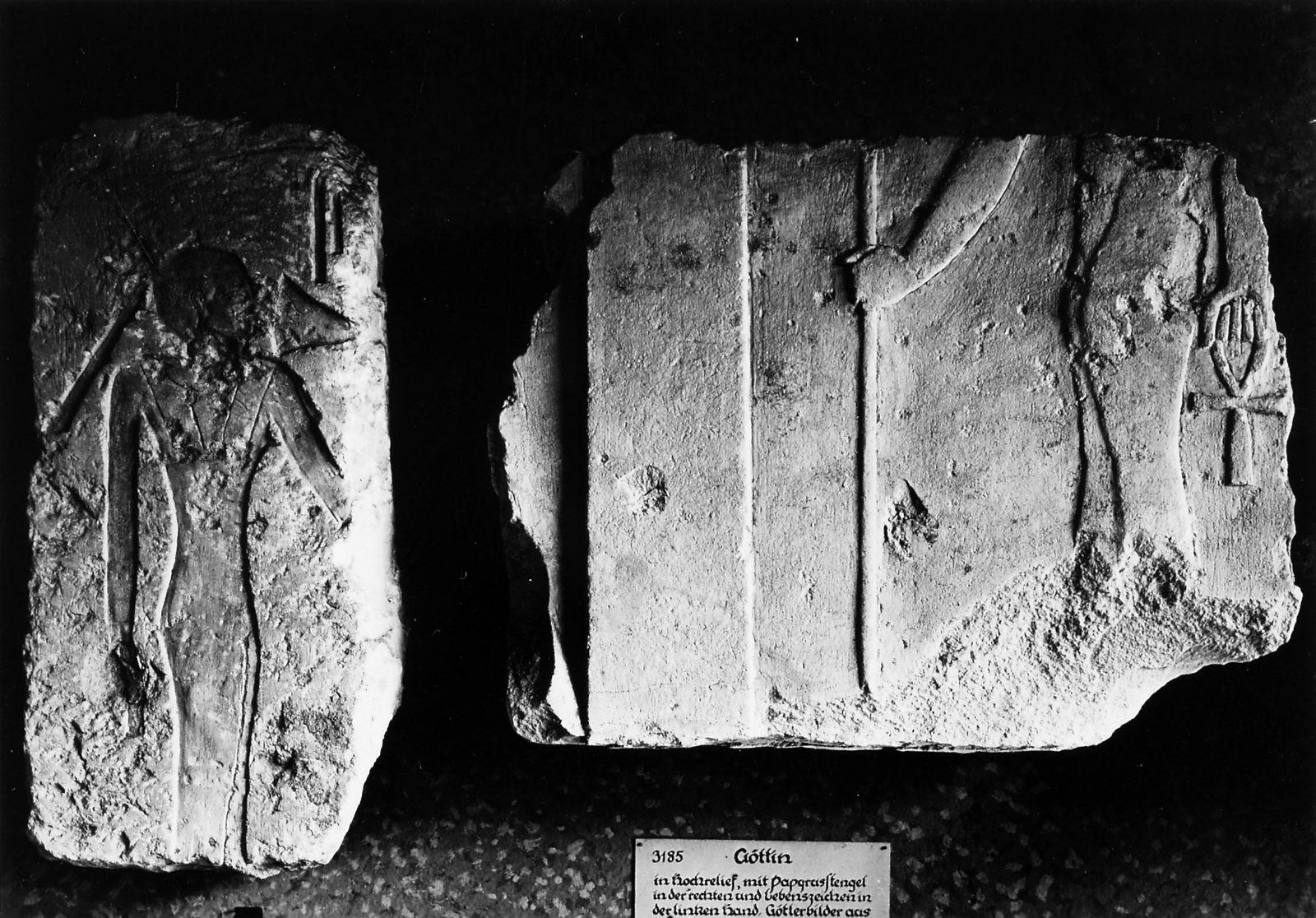 Object(s) photograph: Site: Giza; view: Mastaba III, Khafre Causeway, S 970/971