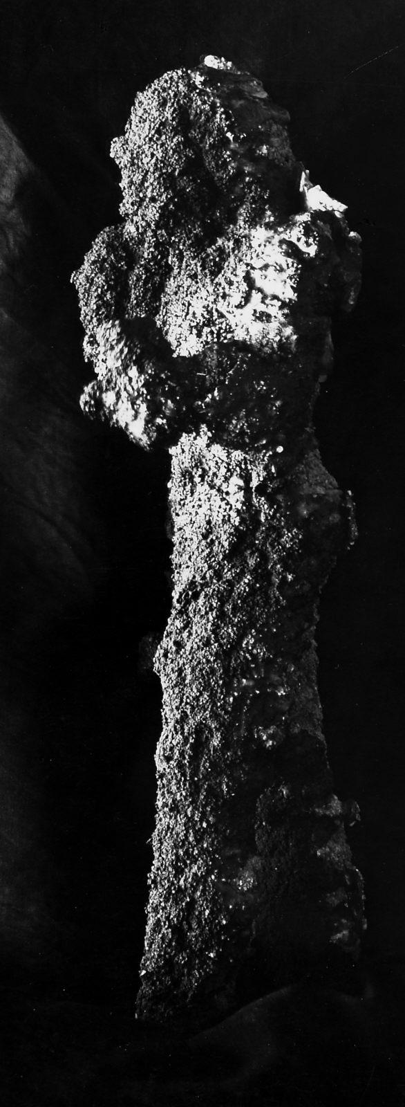 Object(s) photograph: Site: Giza; view: Idu [II]