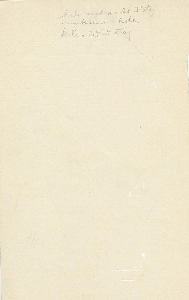 Notes: G 2162, Shaft E, notes