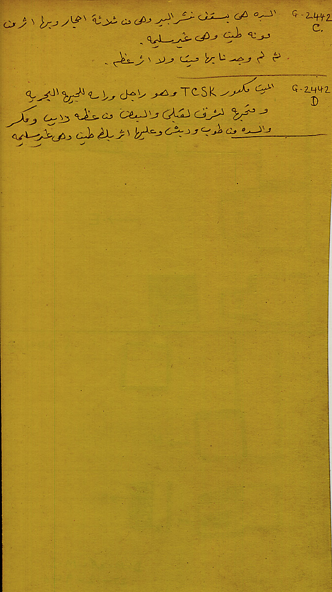 Notes: G 2442, Shaft C and D, notes (in Arabic)
