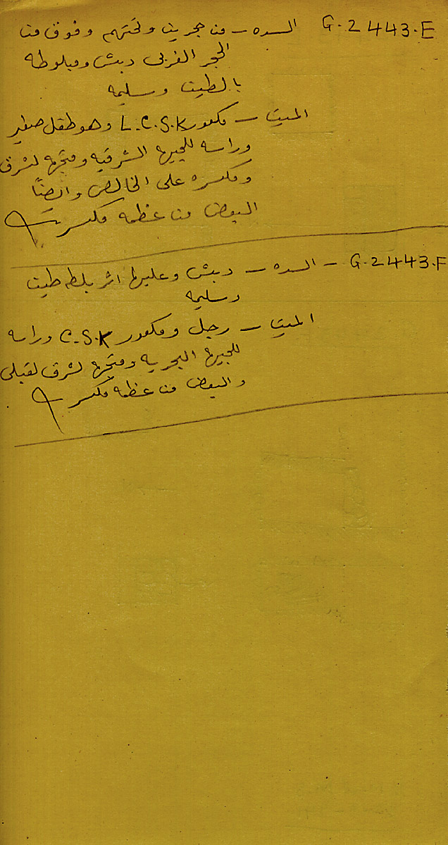 Notes: G 2443, Shaft E and F, notes (in Arabic)
