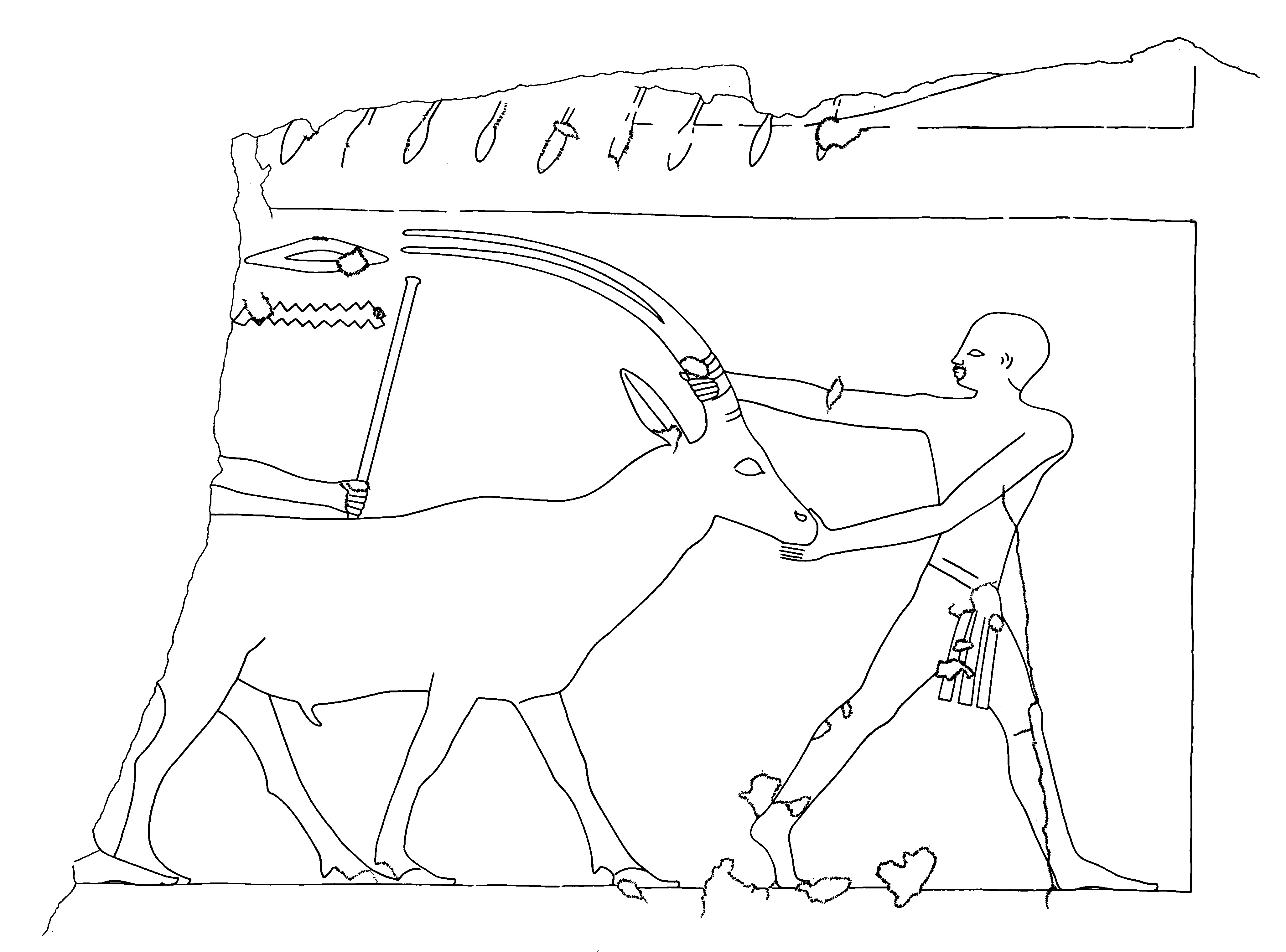 Drawings: G 5080 (= G 2200): relief from entrance, S jamb