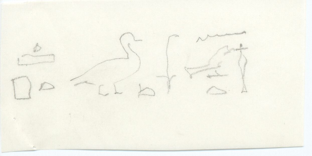 Drawings: G 5210: inscription from E face