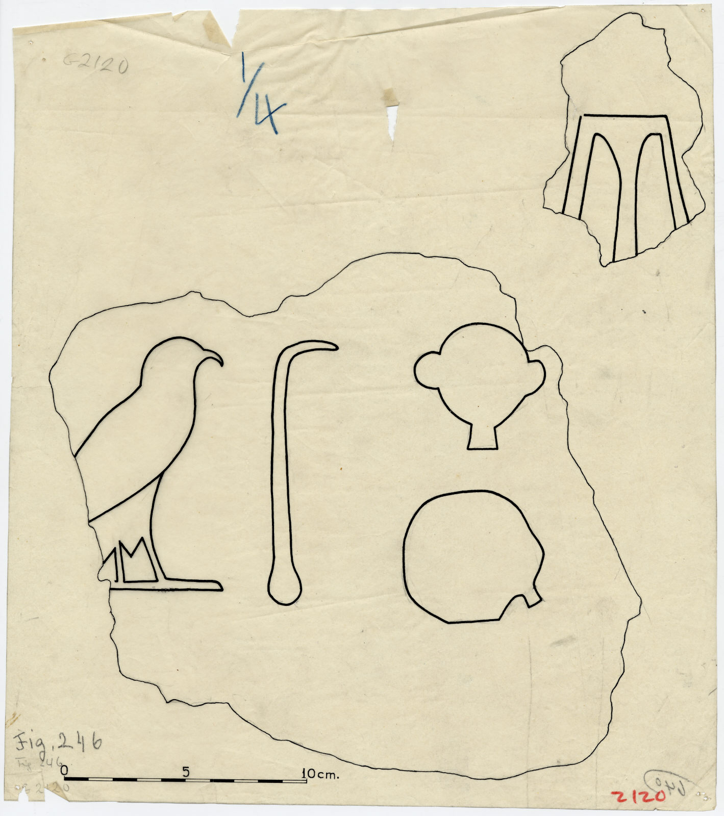 Drawings: G 2120: fragments of relief from drum lintel