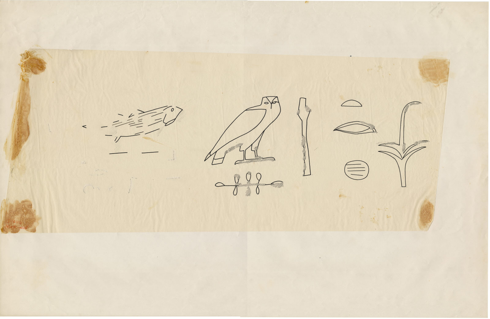 Drawings: G 1206: relief from offering chamber, N wall, red paint