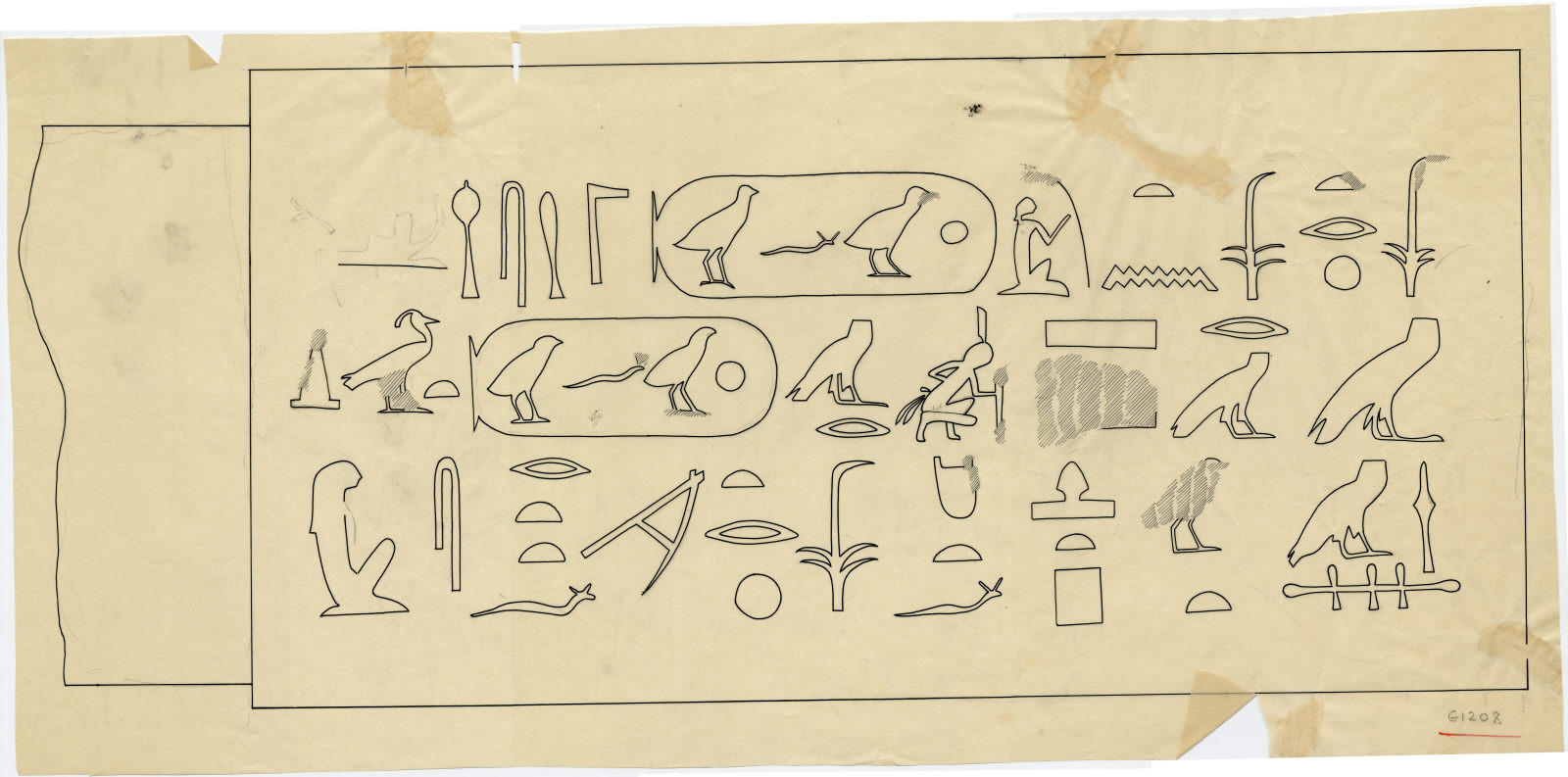 Drawings: G 1208: relief from drum lintel