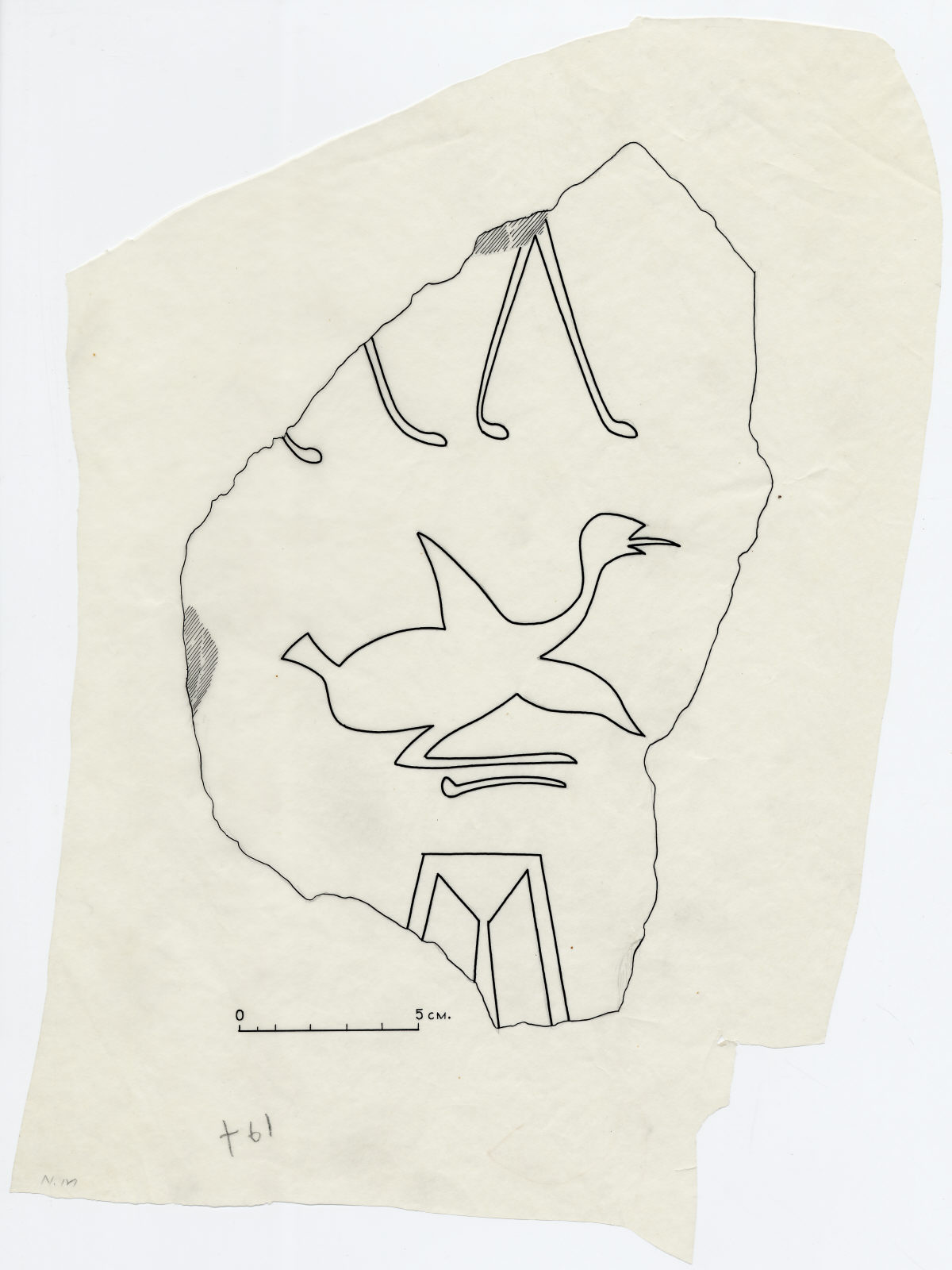 Drawings: G 7769: fragment of relief