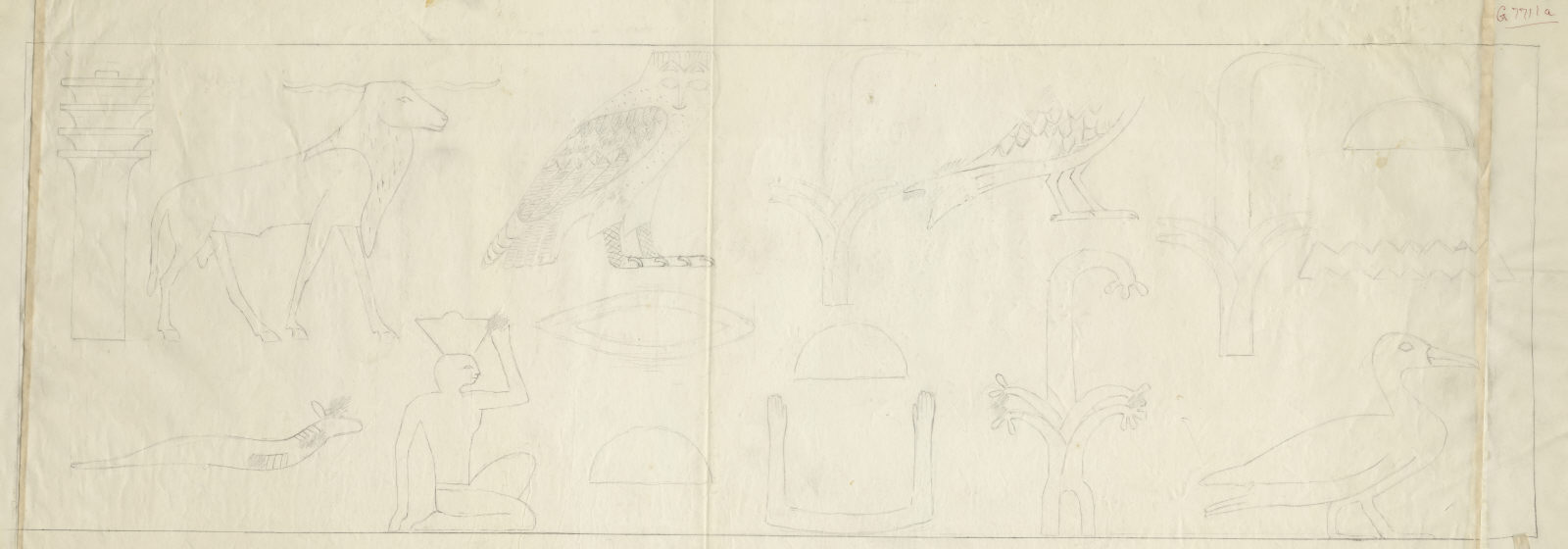 Drawings: G 7711: relief from drum lintel from entrance