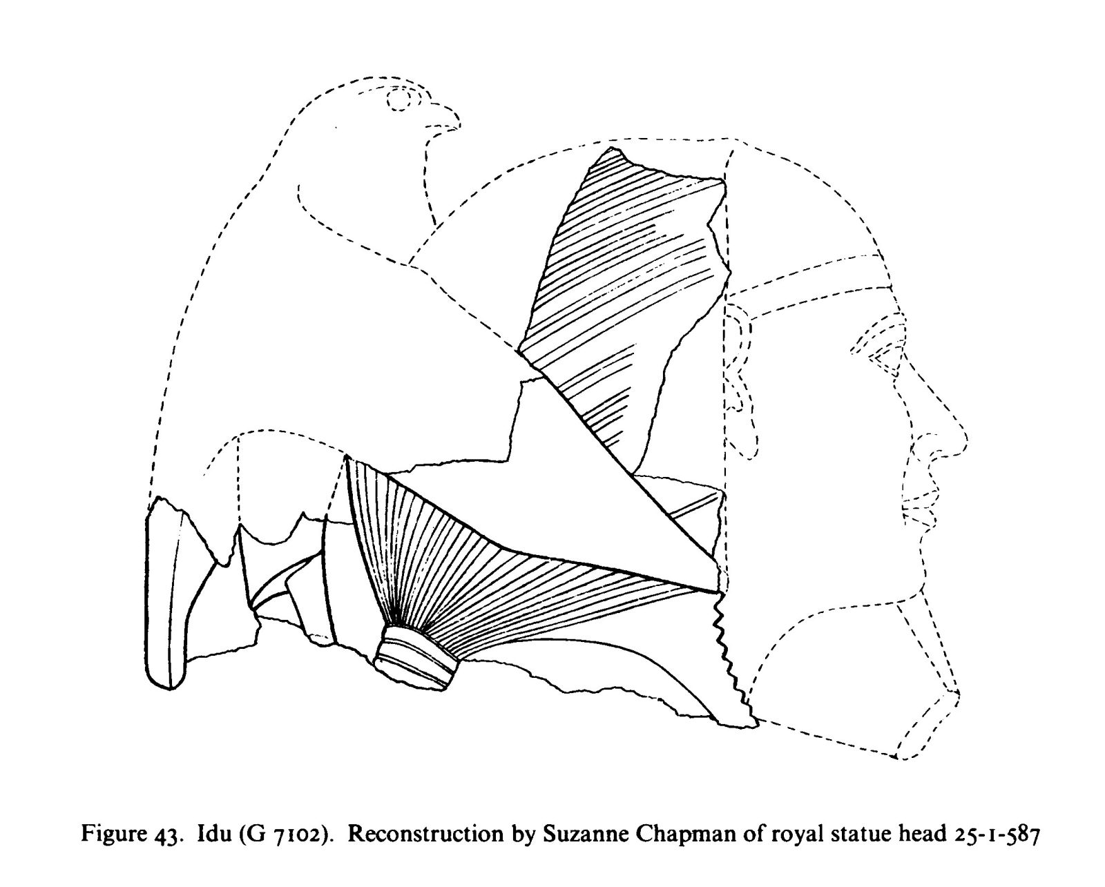 Drawings: G 7102: royal statue head