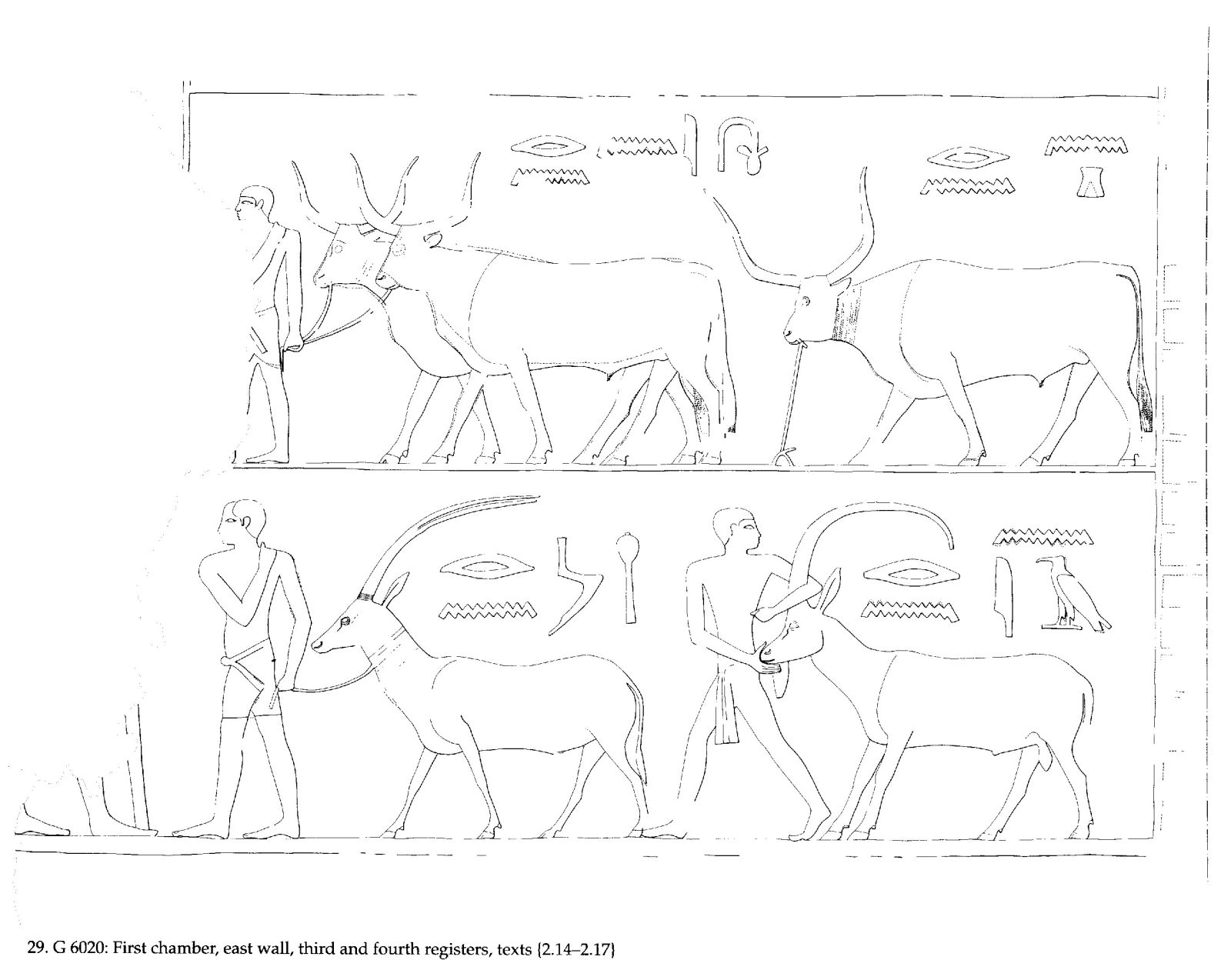 Drawings: G 6020: relief from first chamber, E wall, third and fourth registers