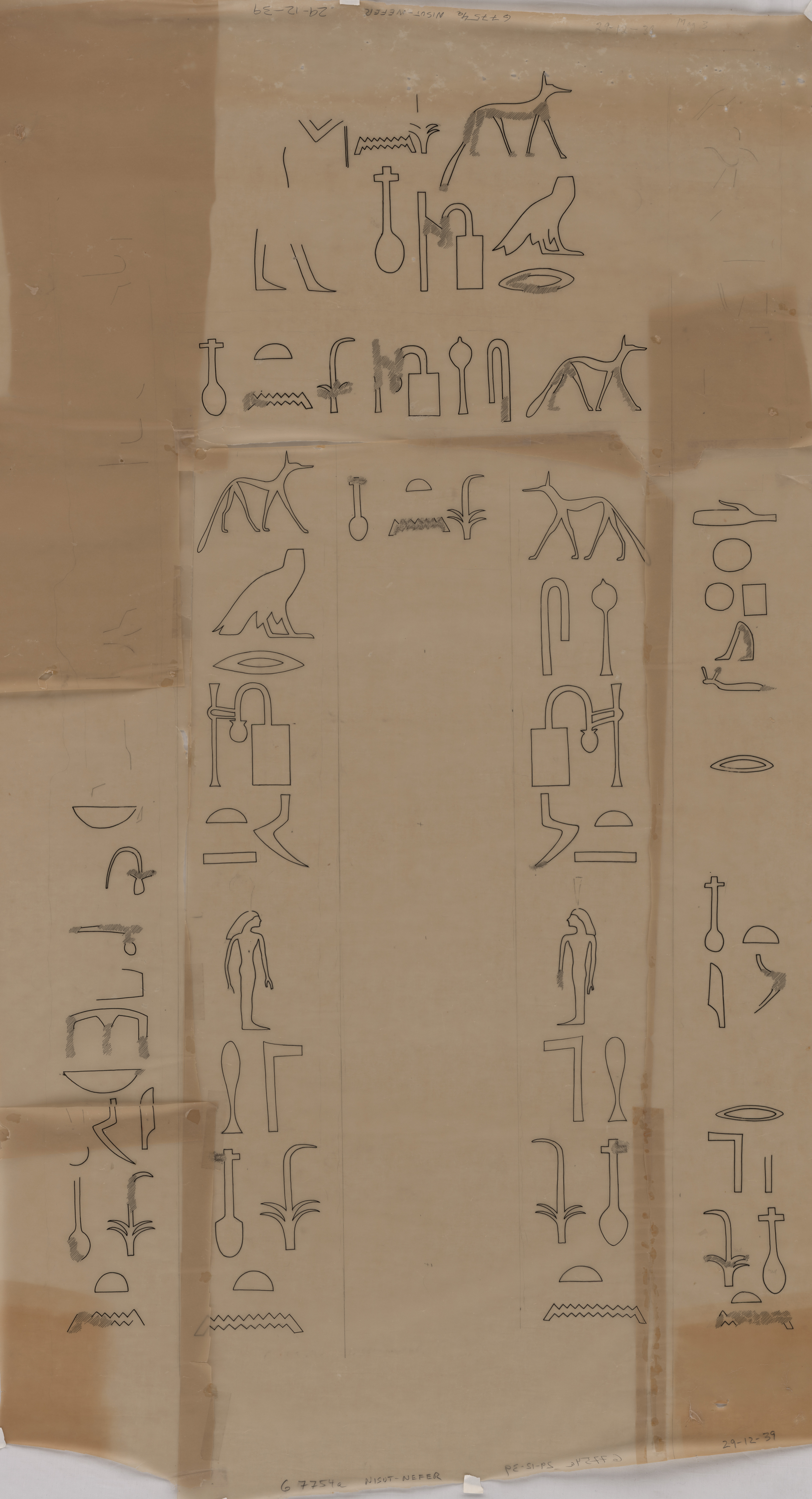 Drawings: G 7754: relief from false door of Nisutnefer