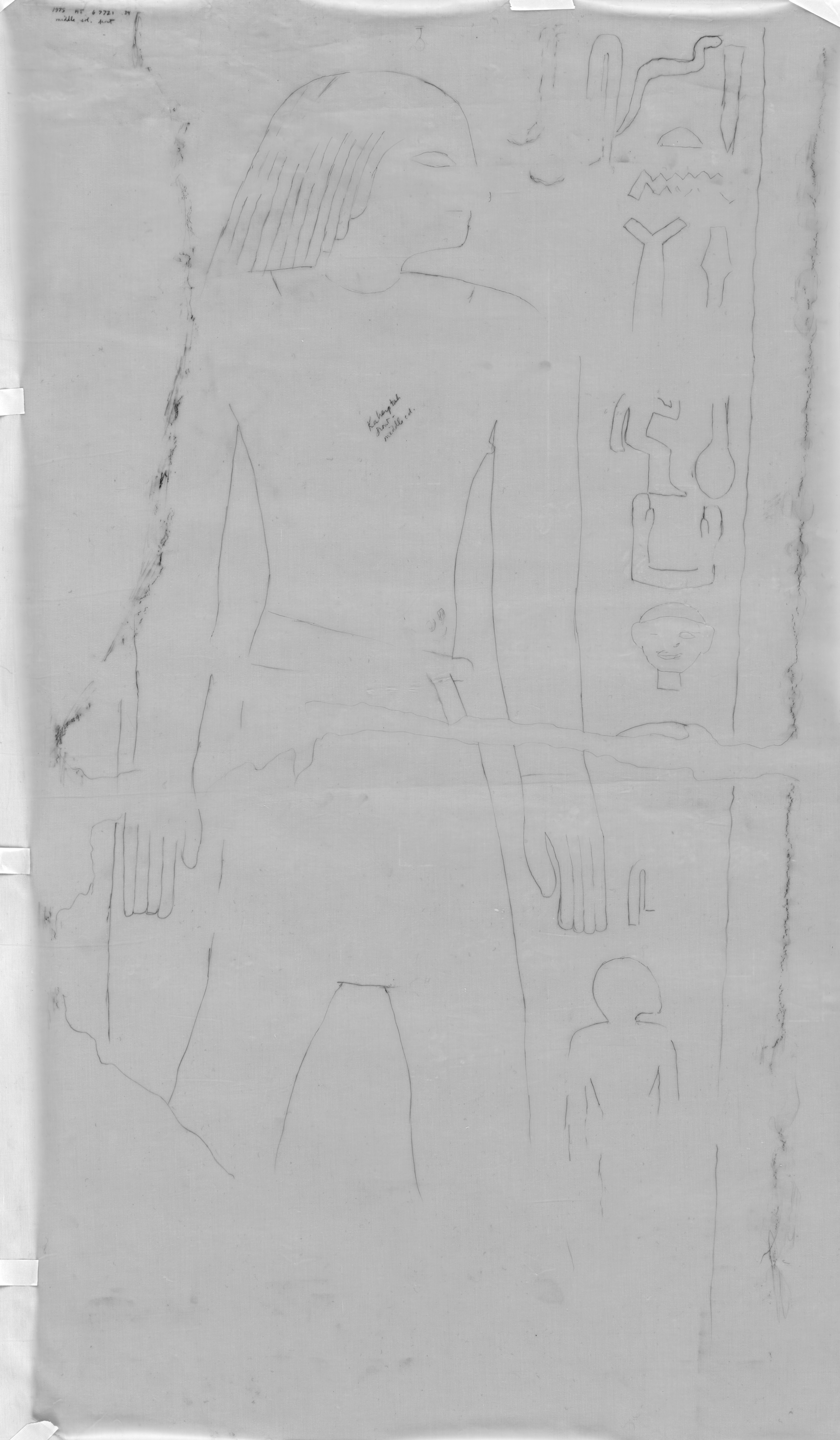 Drawings: G 7721: relief from outer room, W wall, middle pillar