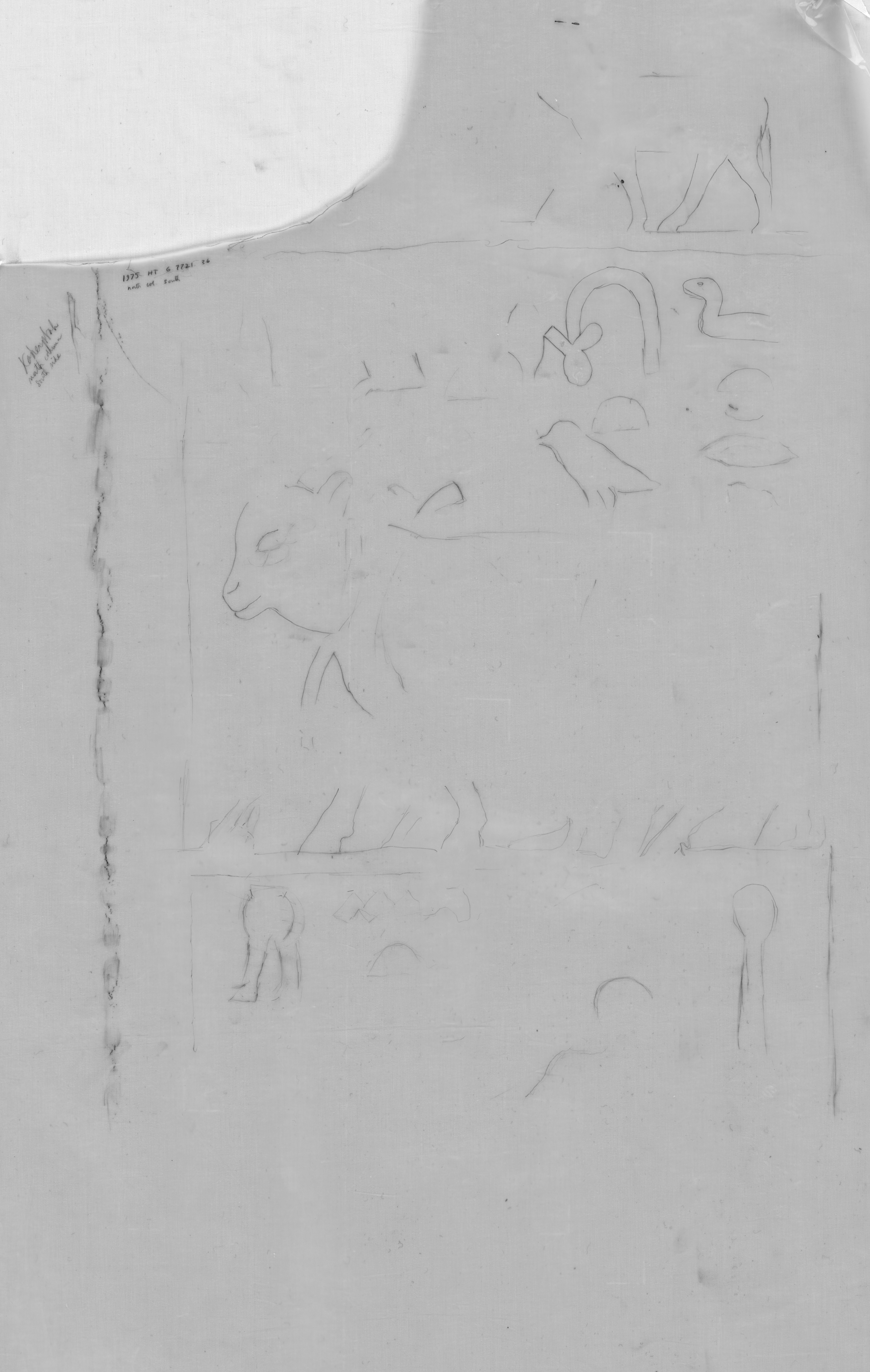 Drawings: G 7721: relief from outer room, W wall, N door, S jamb
