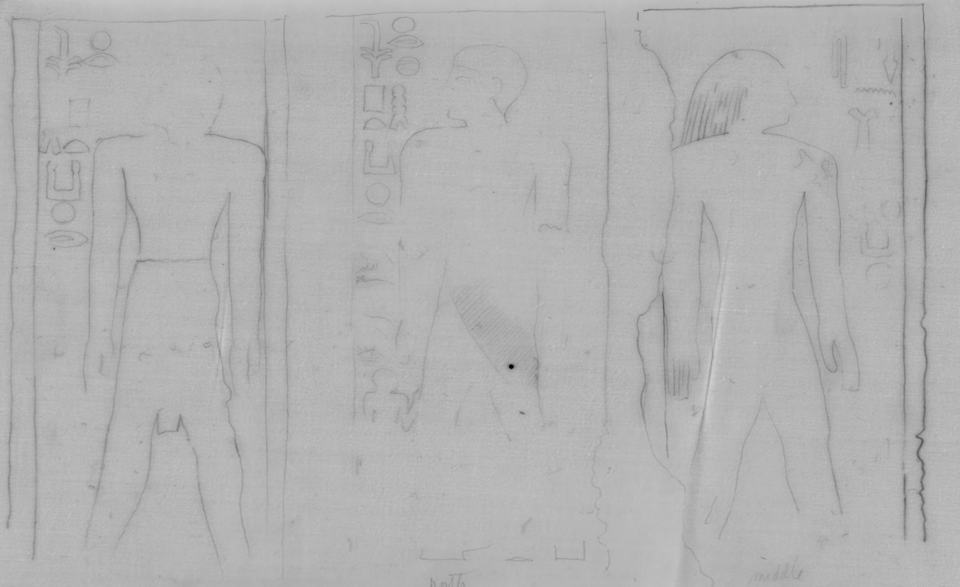 Drawings: G 7721: relief from outer room, W wall, pillars