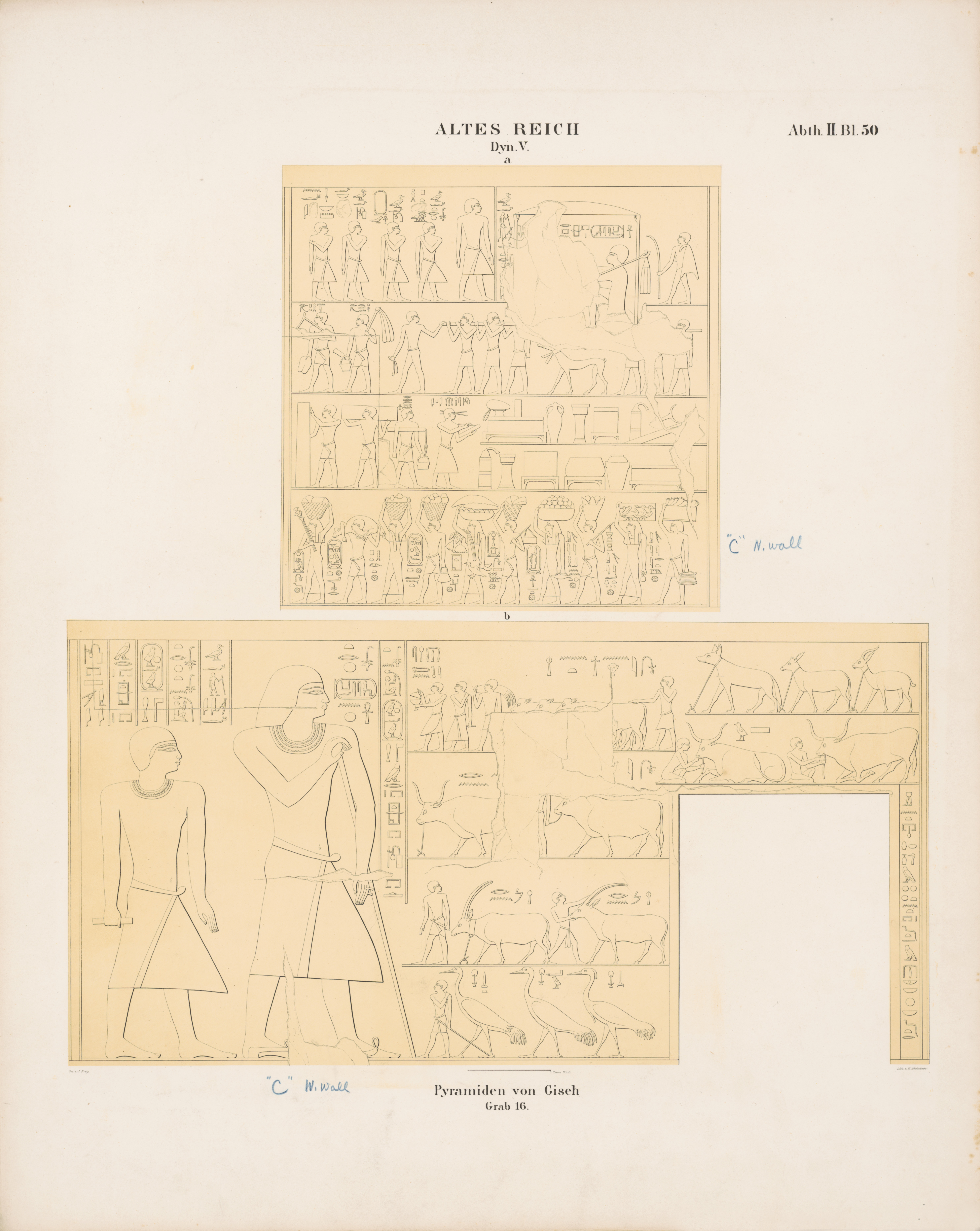 Drawings: G 6020 (= Lepsius 16): relief from Chamber 1, N and W wall; doorway; registers of relief above doorway