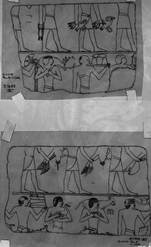 Drawings: G 2370: relief from Room A, S wall