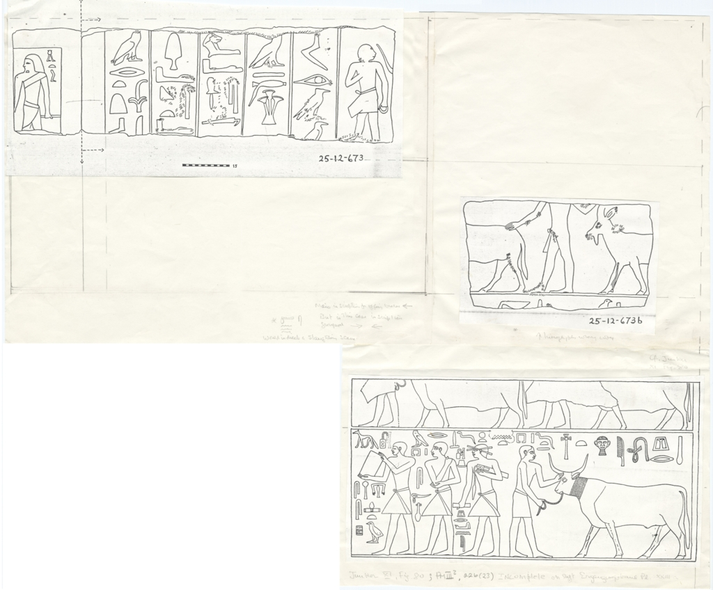 Drawings: Relief from Street G 7000 and Lepsius 53, limestone blocks