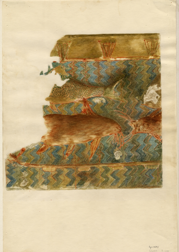 Drawings: G 6020: relief from S wall (modern painting)