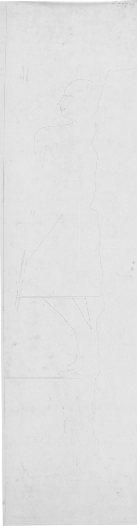 Drawings: G 2184: relief from W wall