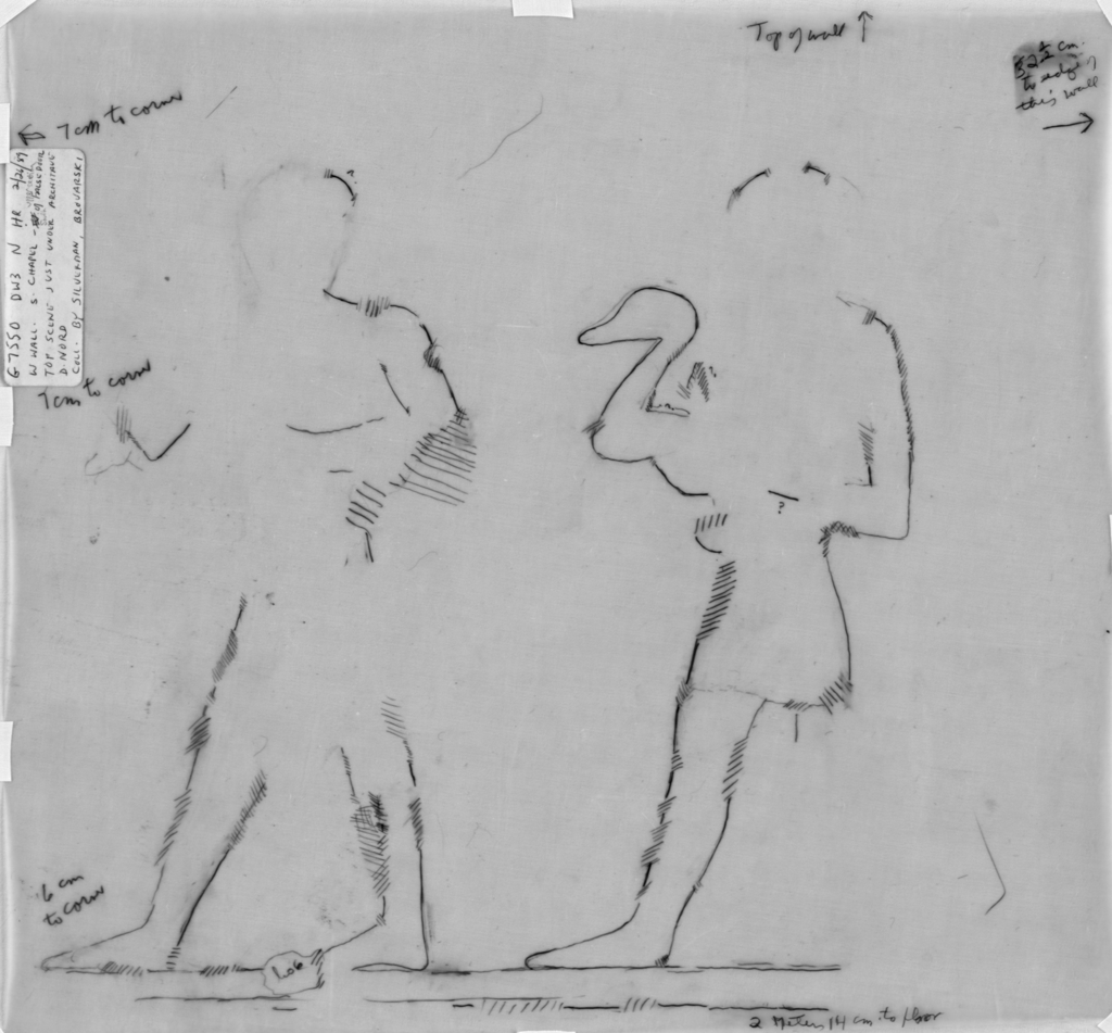 Drawings: G 7550: relief from S chapel, W wall