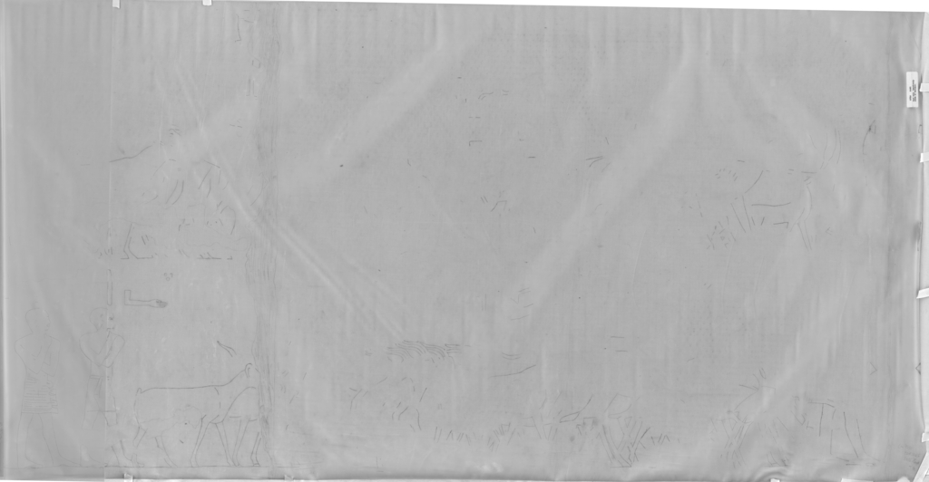 Drawings: G 7810: relief from E wall, N end