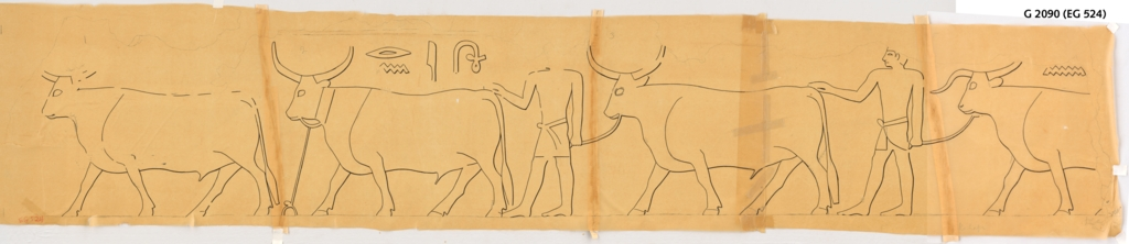 Drawings: G 3090: relief from corridor, E wall