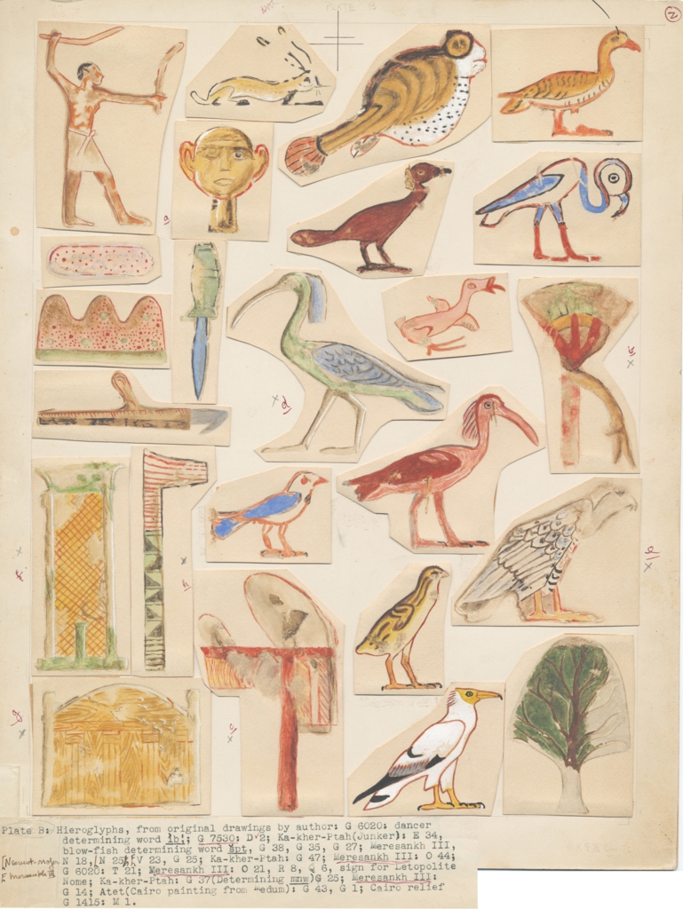 Drawings: Hieroglyphs from G 4970, G 5560, G 6020, G 7530-7540  (modern painting)