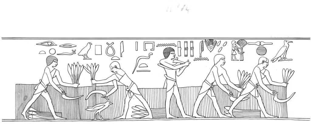 Drawings: G 1029: relief from E wall