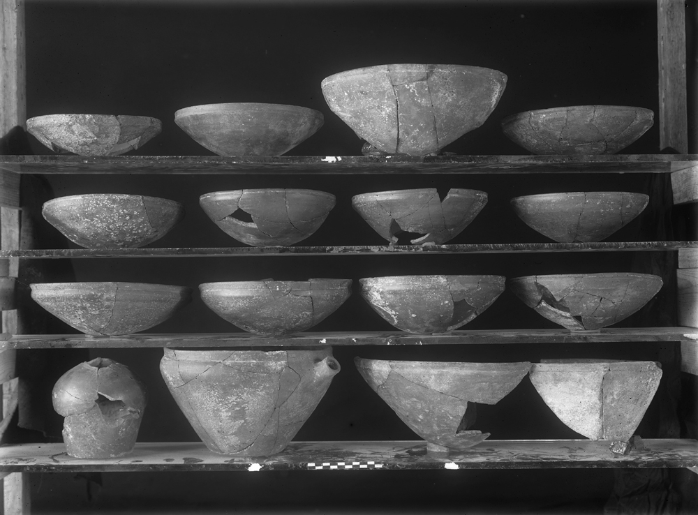 Object(s) photograph: Site: Giza; view: G 5561