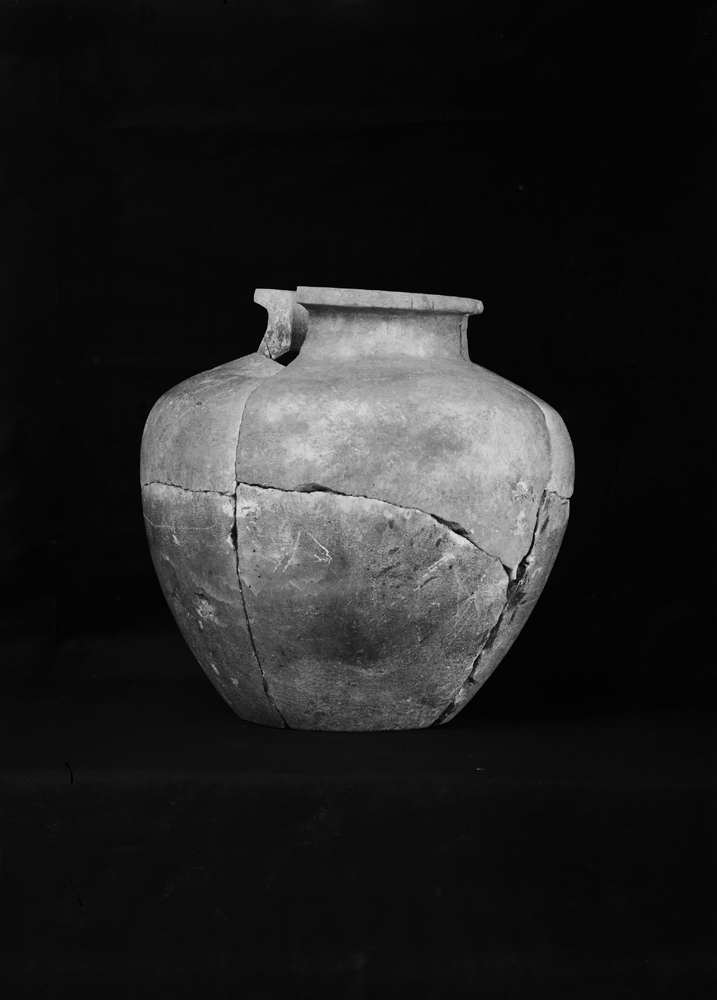 Object(s) photograph: Site: Giza; view: G 2100