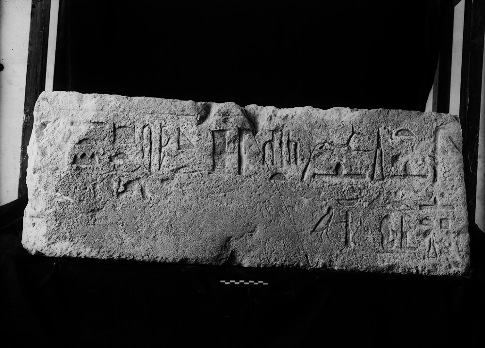 Object(s) photograph: Site: Giza; view: G 2239b