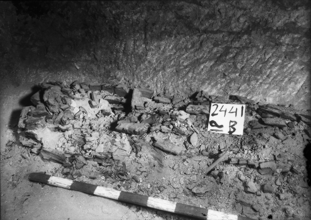 Western Cemetery: Site: Giza; View: G 2441