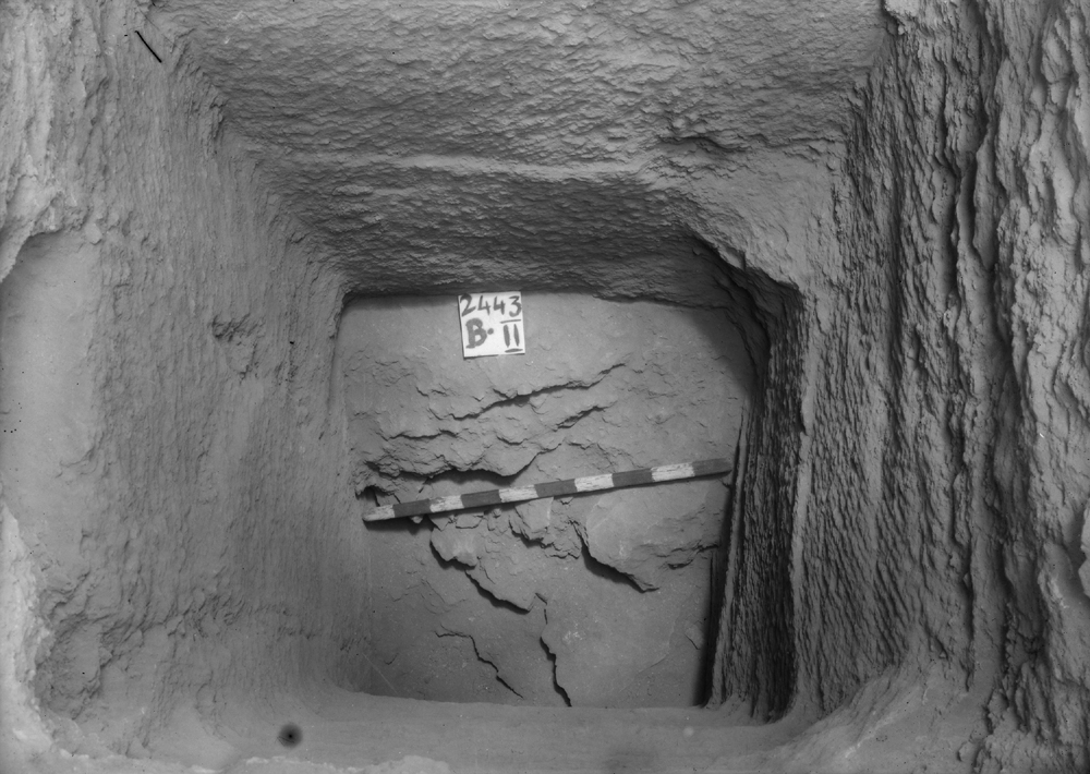 Western Cemetery: Site: Giza; View: G 2443