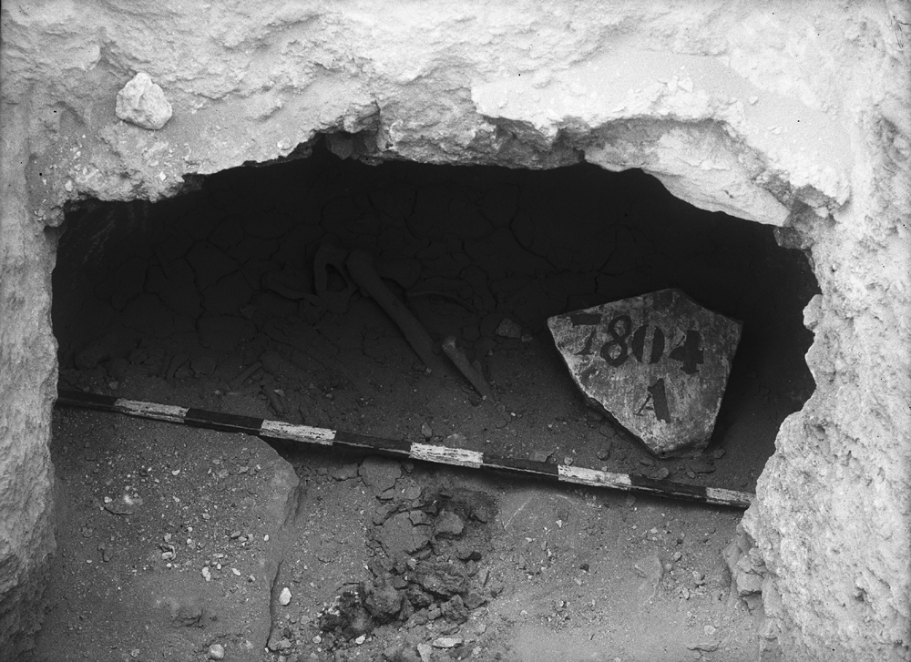 Eastern Cemetery: Site: Giza; View: G 7804