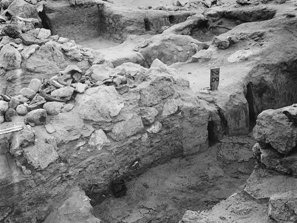 Wadi Cemetery (Reisner; north of W. Cem): Site: Giza; View: GW 28, GW 29, GW 48, GW 50, GW 51, GW 52