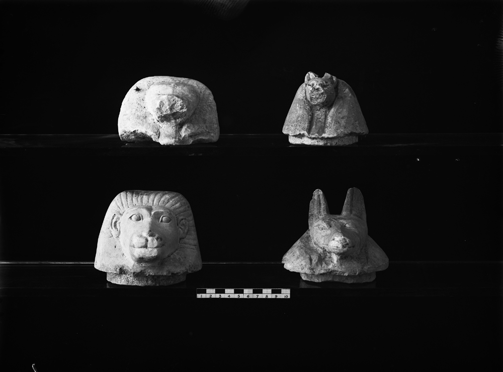 Object(s) photograph: Site: Giza; view: G 7141, G 7050, street G 7300