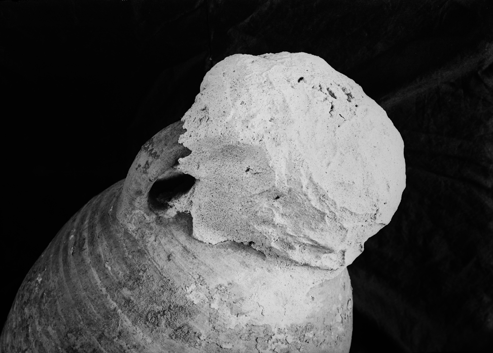 Object(s) photograph: Site: Giza; view: G 1220