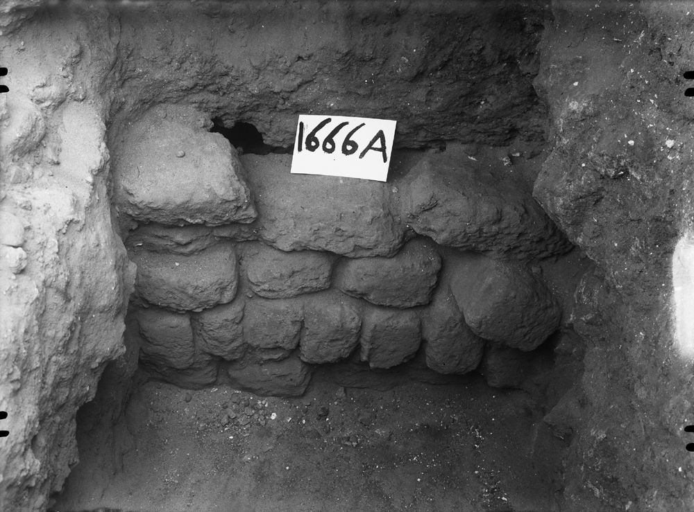 Western Cemetery: Site: Giza; View: G 1666
