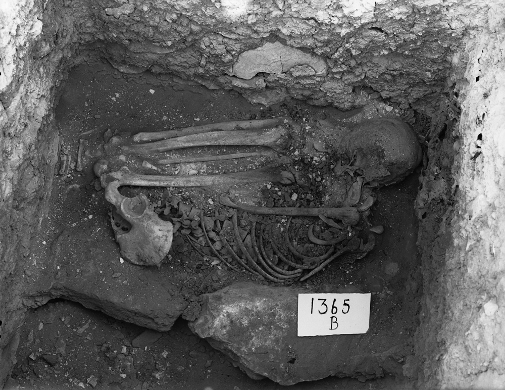 Western Cemetery: Site: Giza; View: G 1365