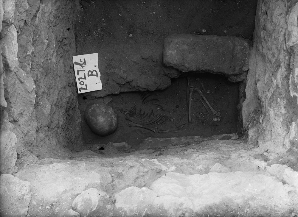 Western Cemetery: Site: Giza; View: G 2027