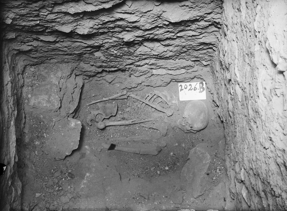 Western Cemetery: Site: Giza; View: G 2026
