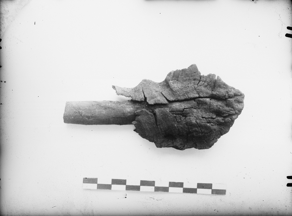 Object(s) photograph: Site: Giza; view: G 2239