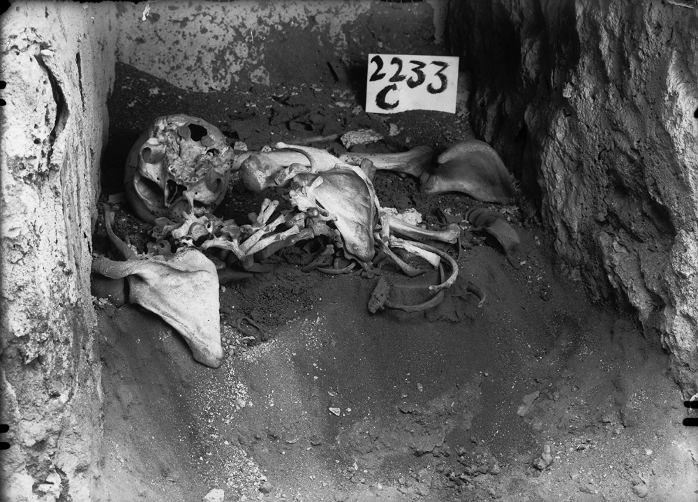 Western Cemetery: Site: Giza; View: G 2233