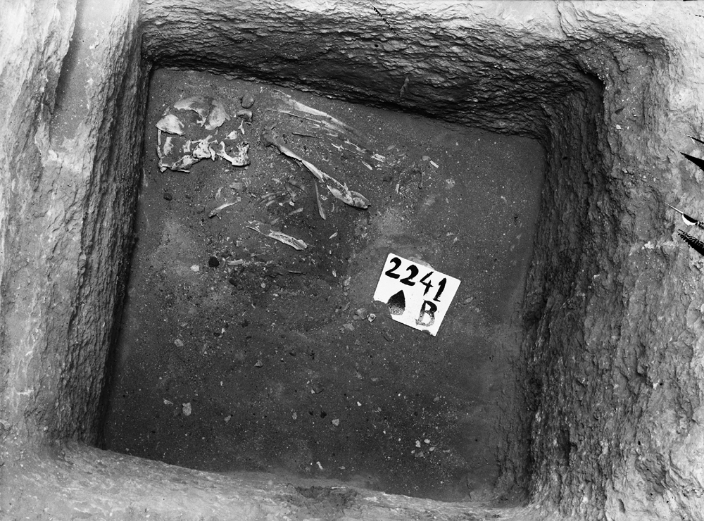 Western Cemetery: Site: Giza; View: G 2241