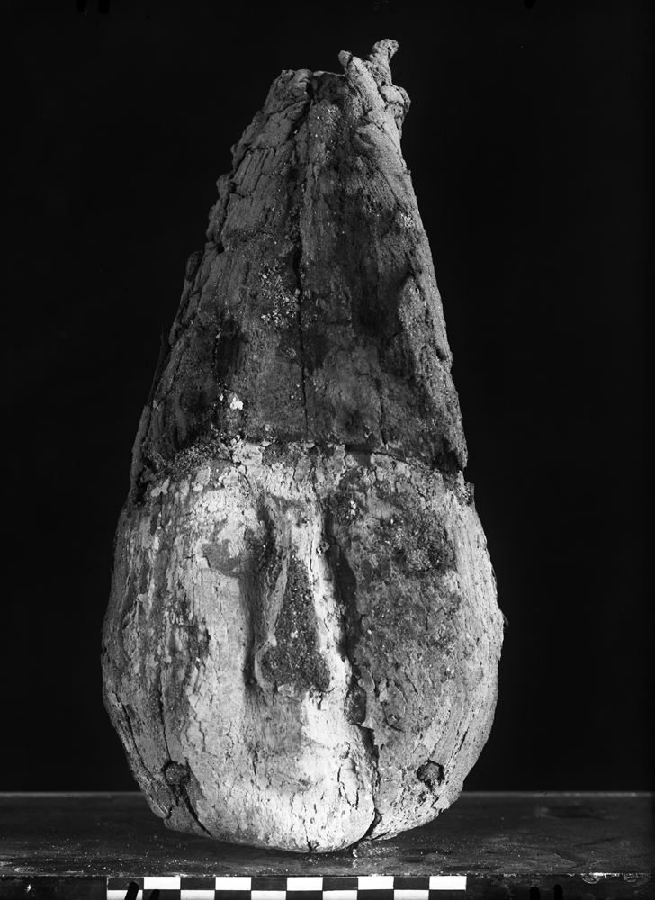 Object(s) photograph: Site: Giza; view: G 2438