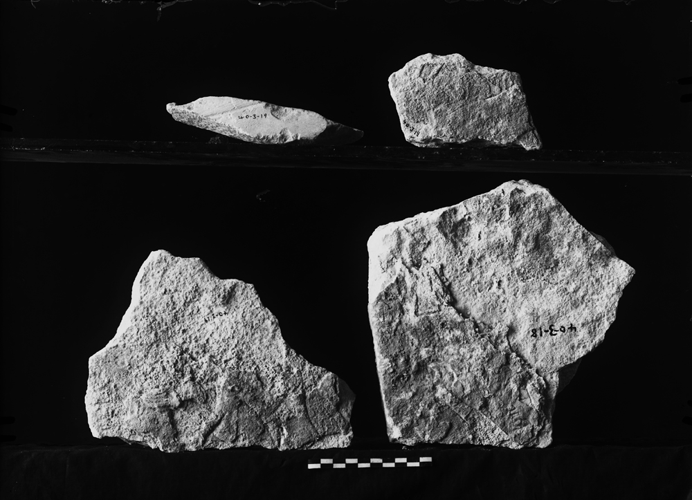 Object(s) photograph: Site: Giza; view: G 2467